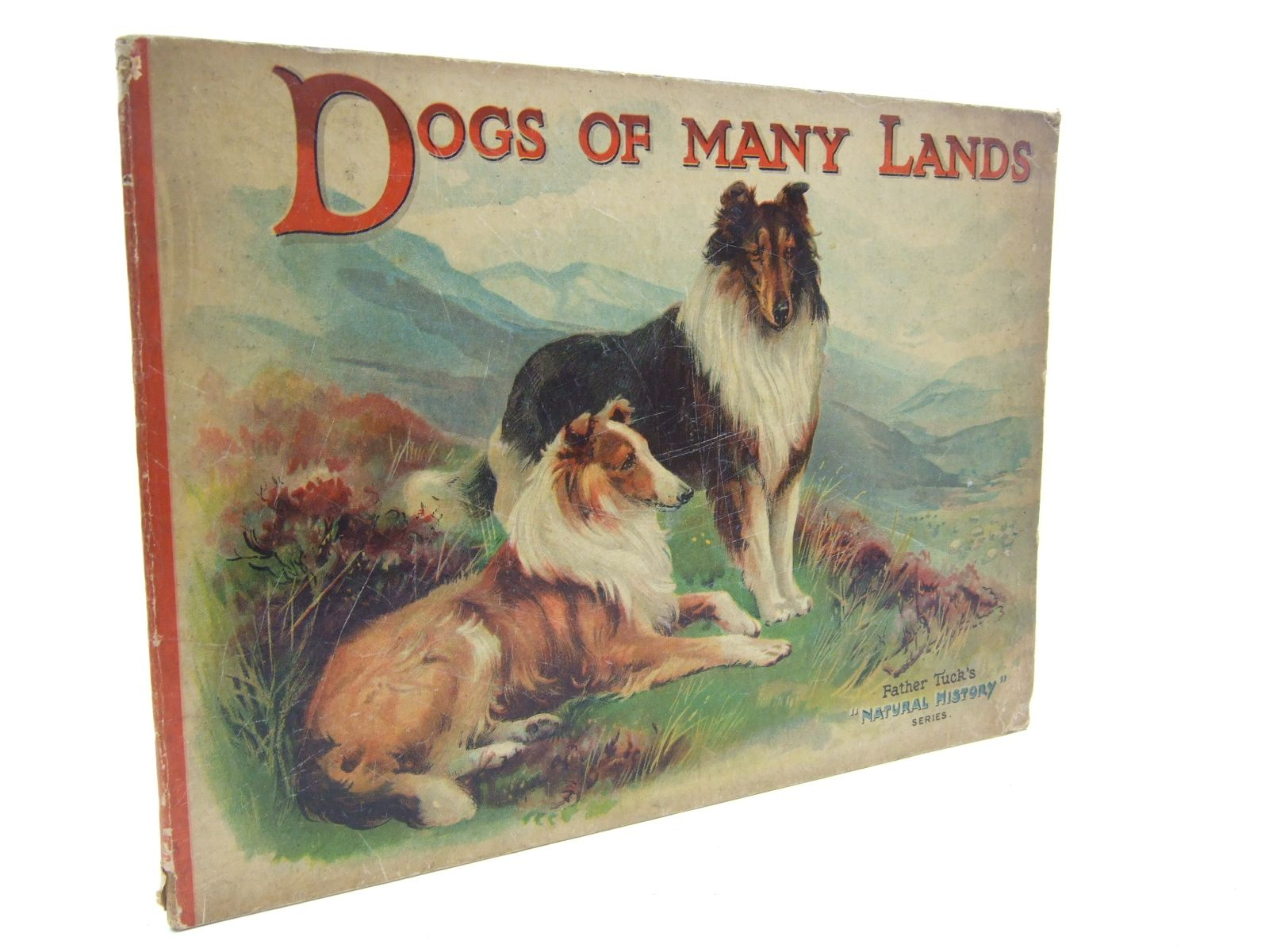 Photo of DOGS OF MANY LANDS published by Raphael Tuck & Sons Ltd. (STOCK CODE: 1707584)  for sale by Stella & Rose's Books