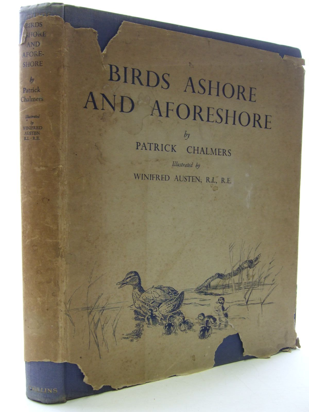 Photo of BIRDS ASHORE AND A-FORESHORE written by Chalmers, Patrick R. illustrated by Austen, Winifred published by Collins (STOCK CODE: 1707876)  for sale by Stella & Rose's Books