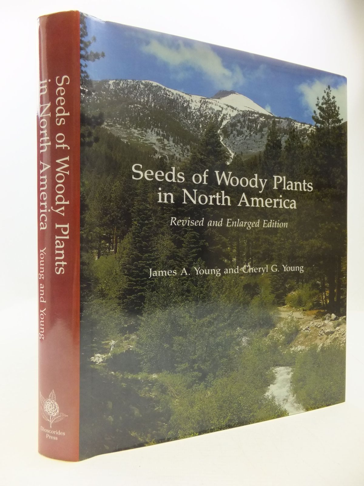 Photo of SEEDS OF WOODY PLANTS IN NORTH AMERICA written by Young, James A.<br />Young, Cheryl G. published by Dioscorides Press (STOCK CODE: 1708766)  for sale by Stella & Rose's Books