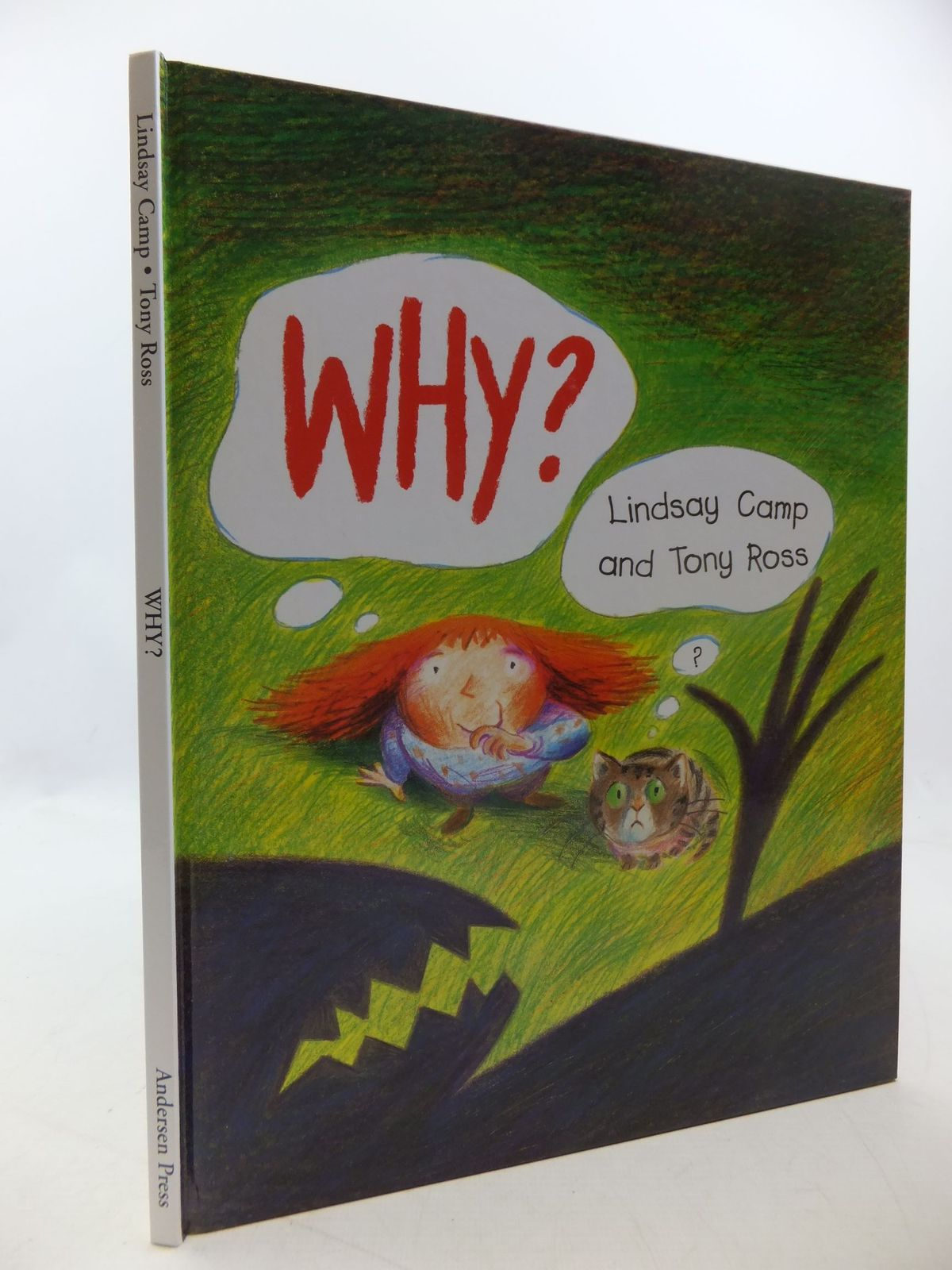 Photo of WHY? written by Camp, Lindsay illustrated by Ross, Tony published by Andersen Press (STOCK CODE: 1710219)  for sale by Stella & Rose's Books