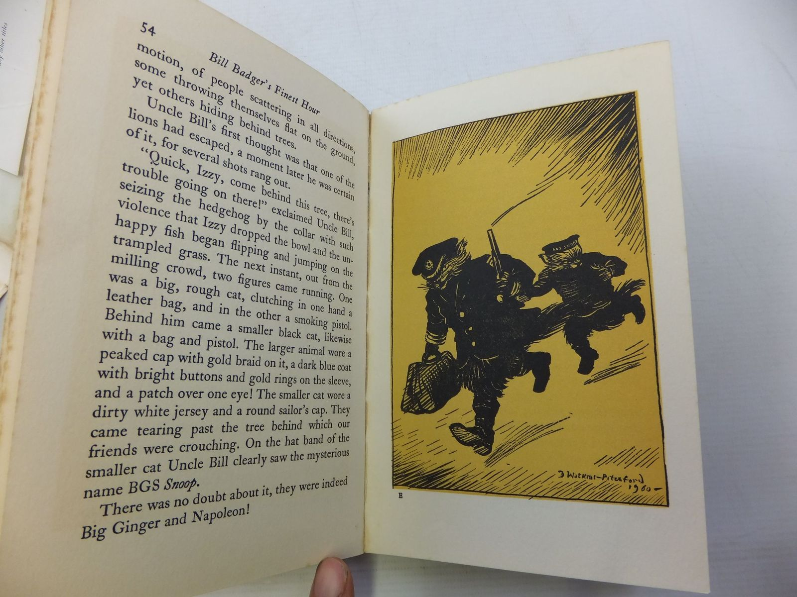 Photo of BILL BADGER'S FINEST HOUR written by BB,  illustrated by BB,  published by Hamish Hamilton (STOCK CODE: 1710233)  for sale by Stella & Rose's Books