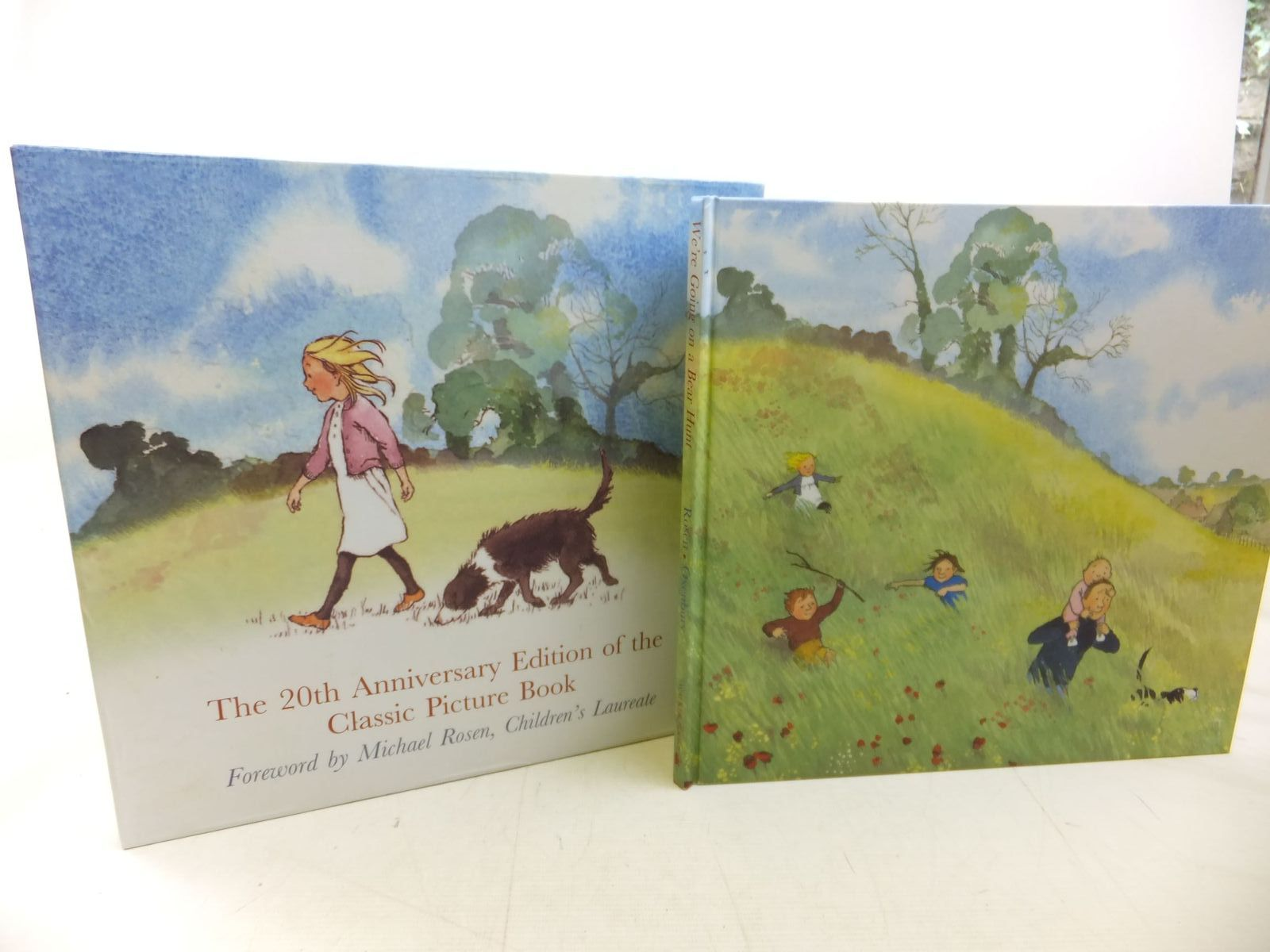 Photo of WE'RE GOING ON A BEAR HUNT: 20TH ANNIVERSARY EDITION written by Rosen, Michael illustrated by Oxenbury, Helen published by Walker Books (STOCK CODE: 1713105)  for sale by Stella & Rose's Books