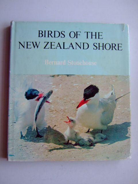 Photo of BIRDS OF THE NEW ZEALAND SHORE written by Stonehouse, Bernard illustrated by Cutten, Felicity published by A.H. & A.W. Reed (STOCK CODE: 1803333)  for sale by Stella & Rose's Books
