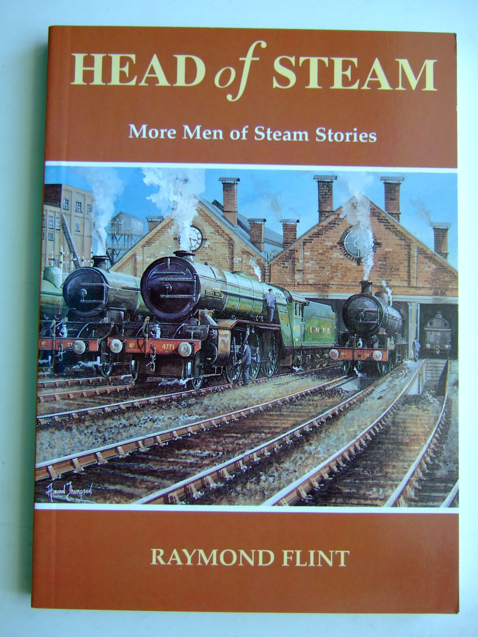 Photo of HEAD OF STEAM written by Flint, Raymond published by Santona Publications (STOCK CODE: 1804498)  for sale by Stella & Rose's Books