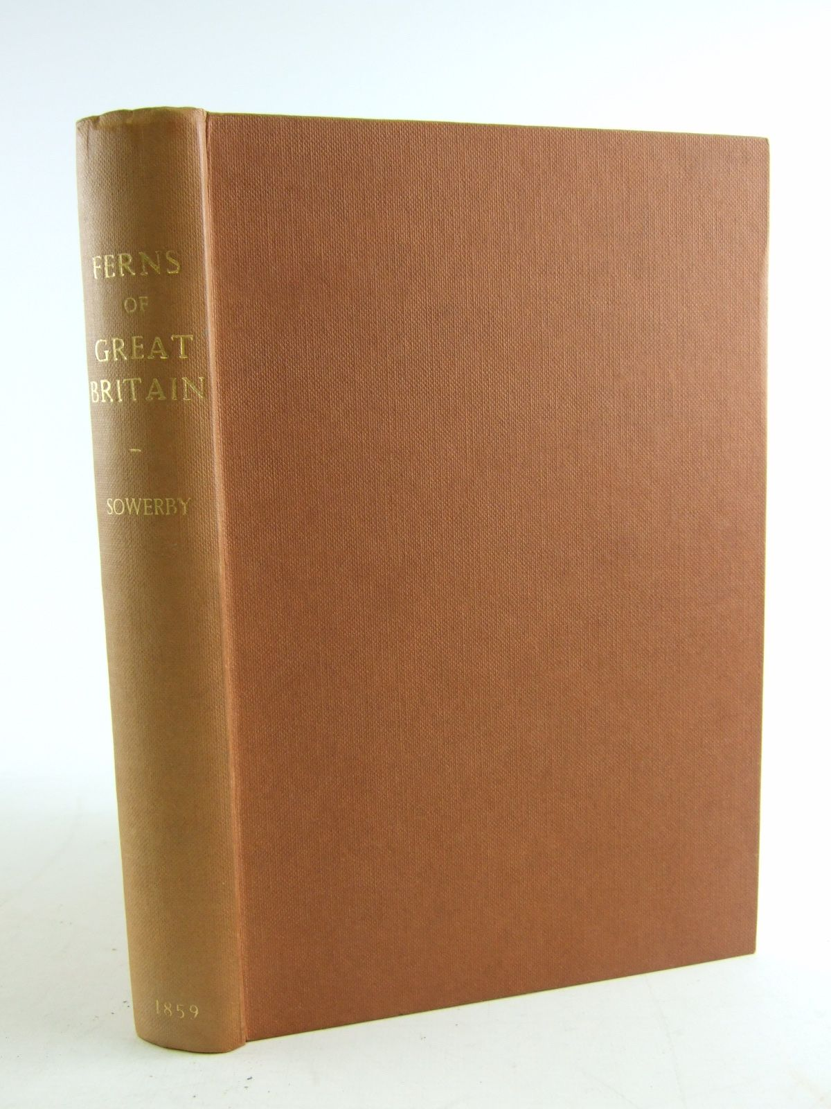 Photo of THE FERNS OF GREAT BRITAIN AND THE FERN ALLIES SUPPLEMENT TO THE FERNS OF GREAT BRITAIN written by Johnson, Charles illustrated by Sowerby, John E. published by Henry G. Bohn (STOCK CODE: 1805571)  for sale by Stella & Rose's Books