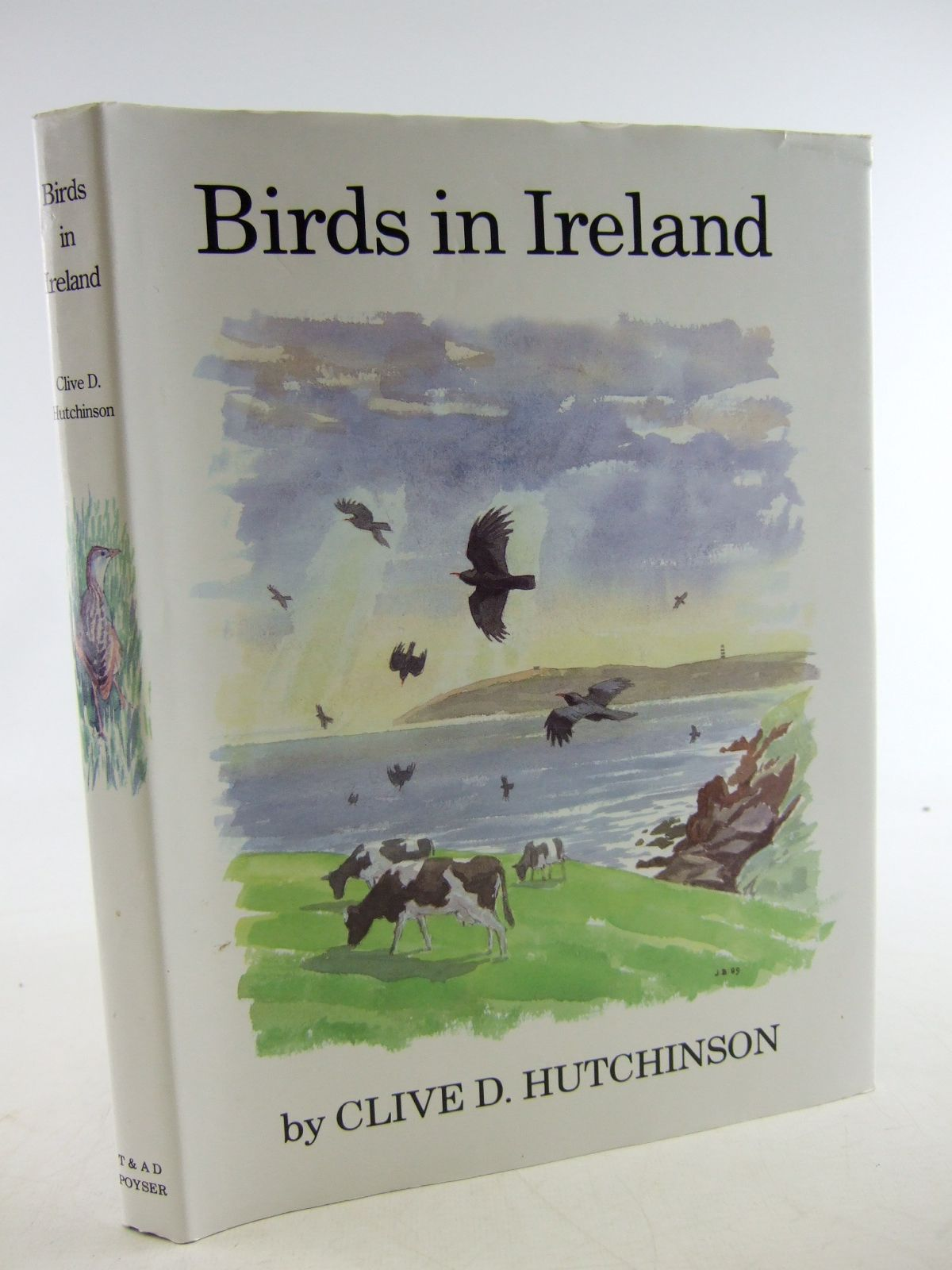 Photo of BIRDS IN IRELAND written by Hutchinson, Clive D. illustrated by Busby,  published by T. & A.D. Poyser (STOCK CODE: 1806330)  for sale by Stella & Rose's Books