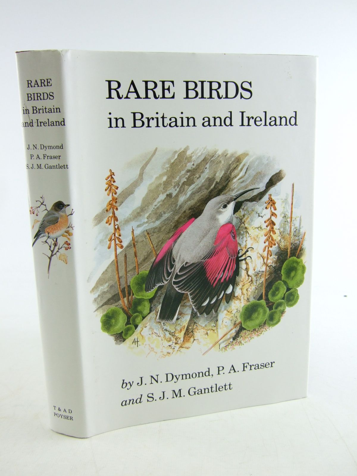 Photo of RARE BIRDS IN BRITAIN AND IRELAND written by Dymond, J.N.<br />Fraser, P.A.<br />Gantlett, S.J.M. published by T. & A.D. Poyser (STOCK CODE: 1806349)  for sale by Stella & Rose's Books
