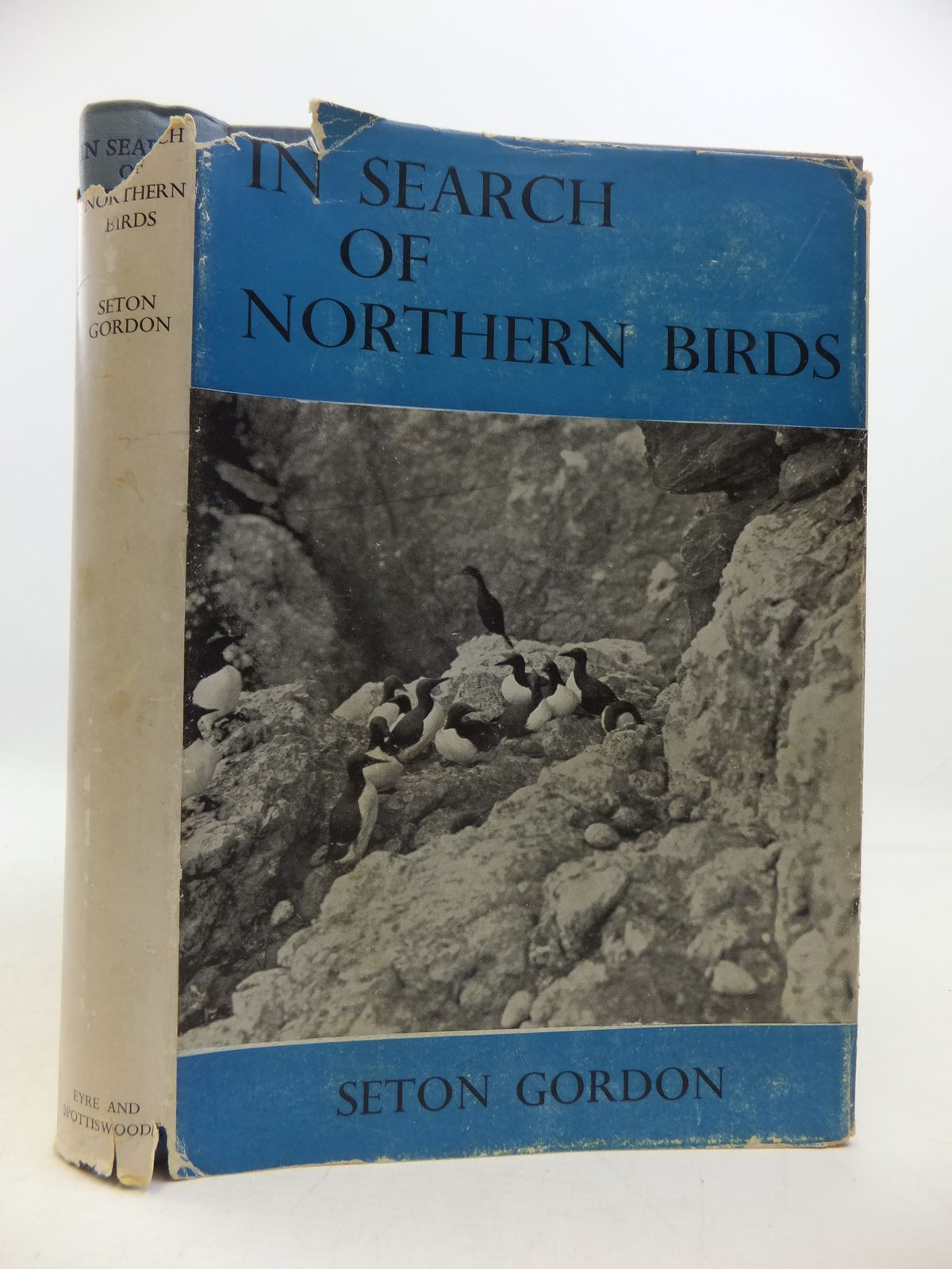 Photo of IN SEARCH OF NORTHER BIRDS written by Gordon, Seton published by Royal Society For The Protection Of Birds, Eyre & Spottiswoode (STOCK CODE: 1808184)  for sale by Stella & Rose's Books