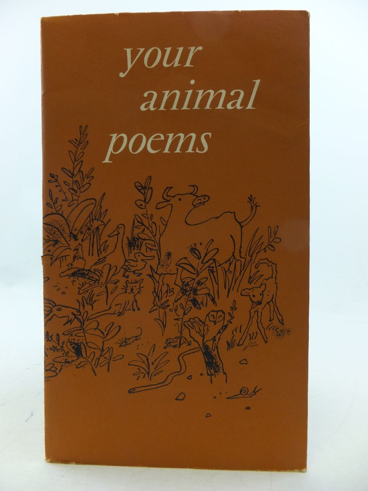Photo of YOUR ANIMAL POEMS written by Lindsay, Vachel<br />Farjeon, Eleanor<br />Hughes, Ted<br />et al,  illustrated by Blake, Quentin published by Gordon Fraser Gallery (STOCK CODE: 1808539)  for sale by Stella & Rose's Books