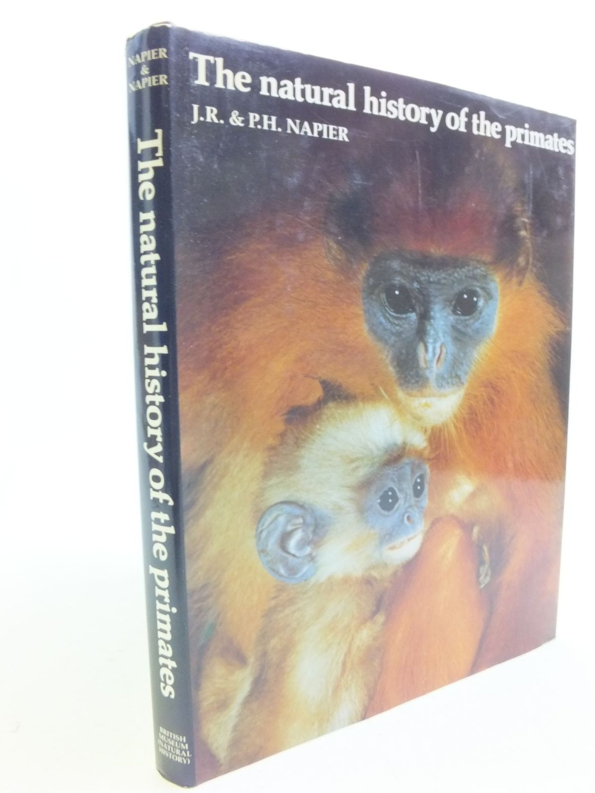 Photo of THE NATURAL HISTORY OF THE PRIMATES written by Napier, J.R.<br />Napier, P.H. published by British Museum (Natural History) (STOCK CODE: 1808807)  for sale by Stella & Rose's Books