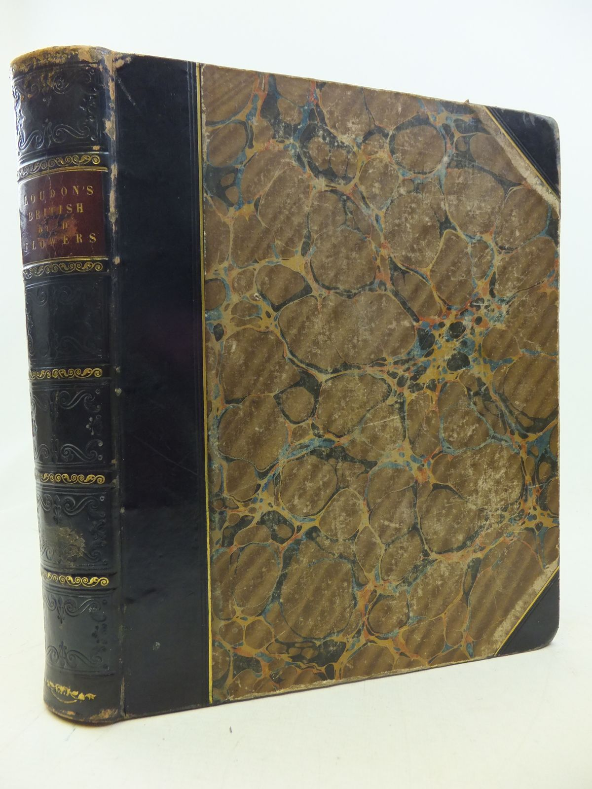 Photo of BRITISH WILD FLOWERS written by Loudon, J.W. illustrated by Loudon, Jane published by William Smith (STOCK CODE: 1809117)  for sale by Stella & Rose's Books