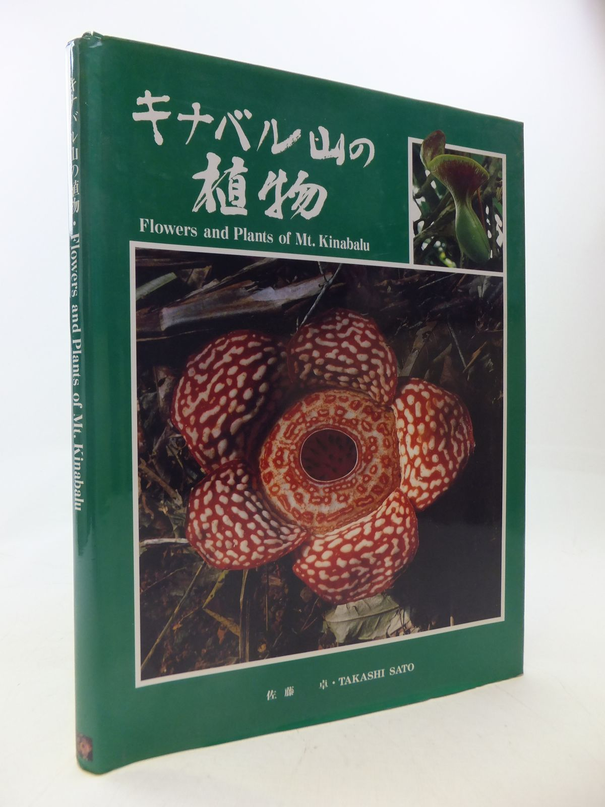 Photo of FLOWERS AND PLANTS OF MT. KINABALU written by Sato, Takashi (STOCK CODE: 1809398)  for sale by Stella & Rose's Books