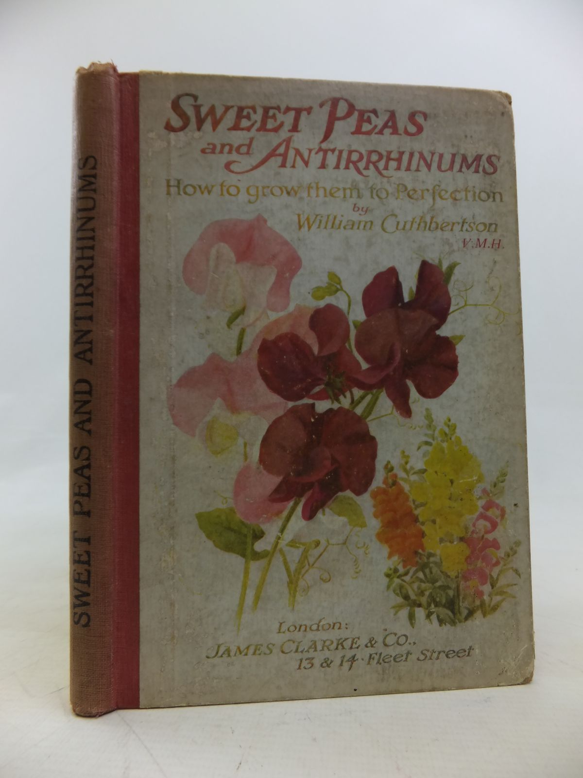 Photo of SWEET PEAS AND ANTIRRHINUMS (SNAPDRAGONS) written by Cuthbertson, William published by James Clarke & Co. (STOCK CODE: 1810496)  for sale by Stella & Rose's Books