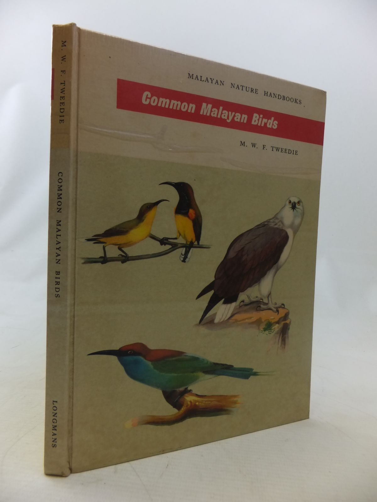 Photo of COMMON MALAYAN BIRDS written by Tweedie, M.W.F. illustrated by Fraser-Brunner, A. published by Longmans (STOCK CODE: 1811063)  for sale by Stella & Rose's Books