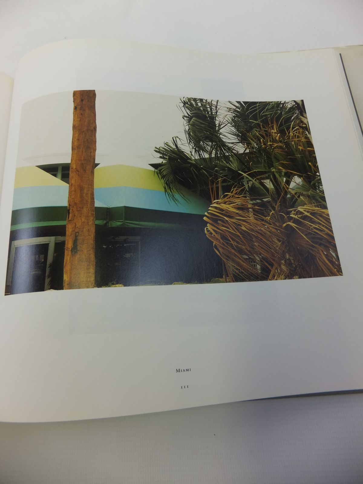 Photo of THE DEMOCRATIC FOREST written by Eggleston, William<br />Welty, Eudora illustrated by Eggleston, William published by Doubleday (STOCK CODE: 1811901)  for sale by Stella & Rose's Books