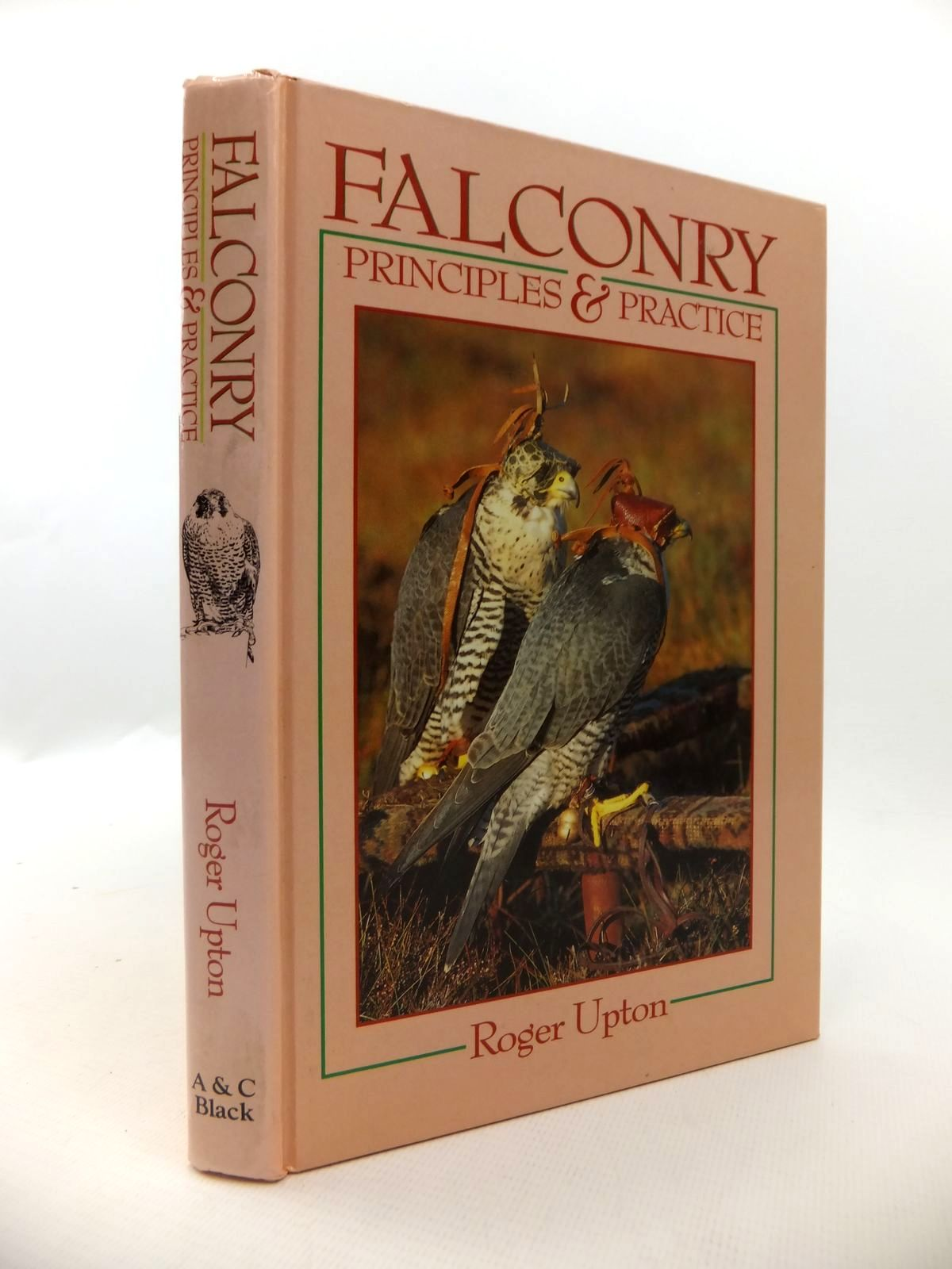 Photo of FALCONRY PRINCIPLES & PRACTICE