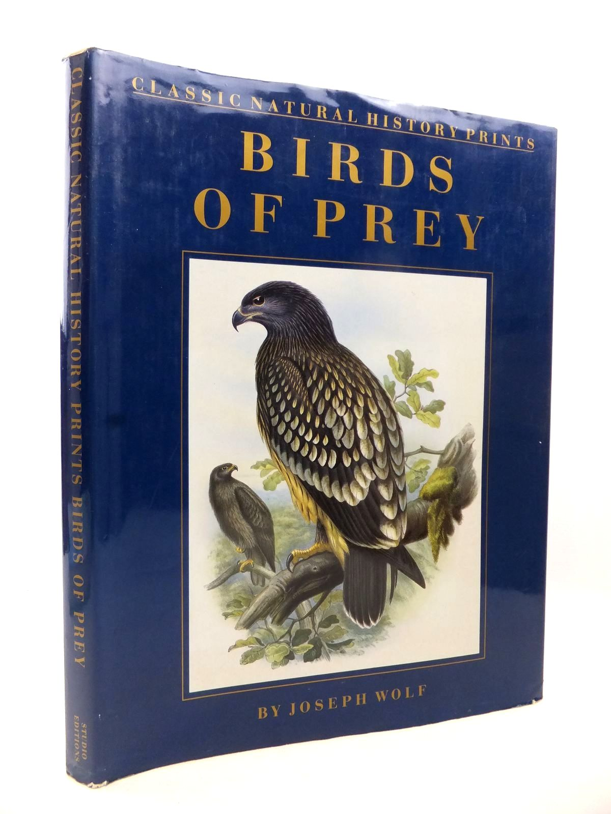 Photo of CLASSIC NATURAL HISTORY PRINTS: BIRDS OF PREY