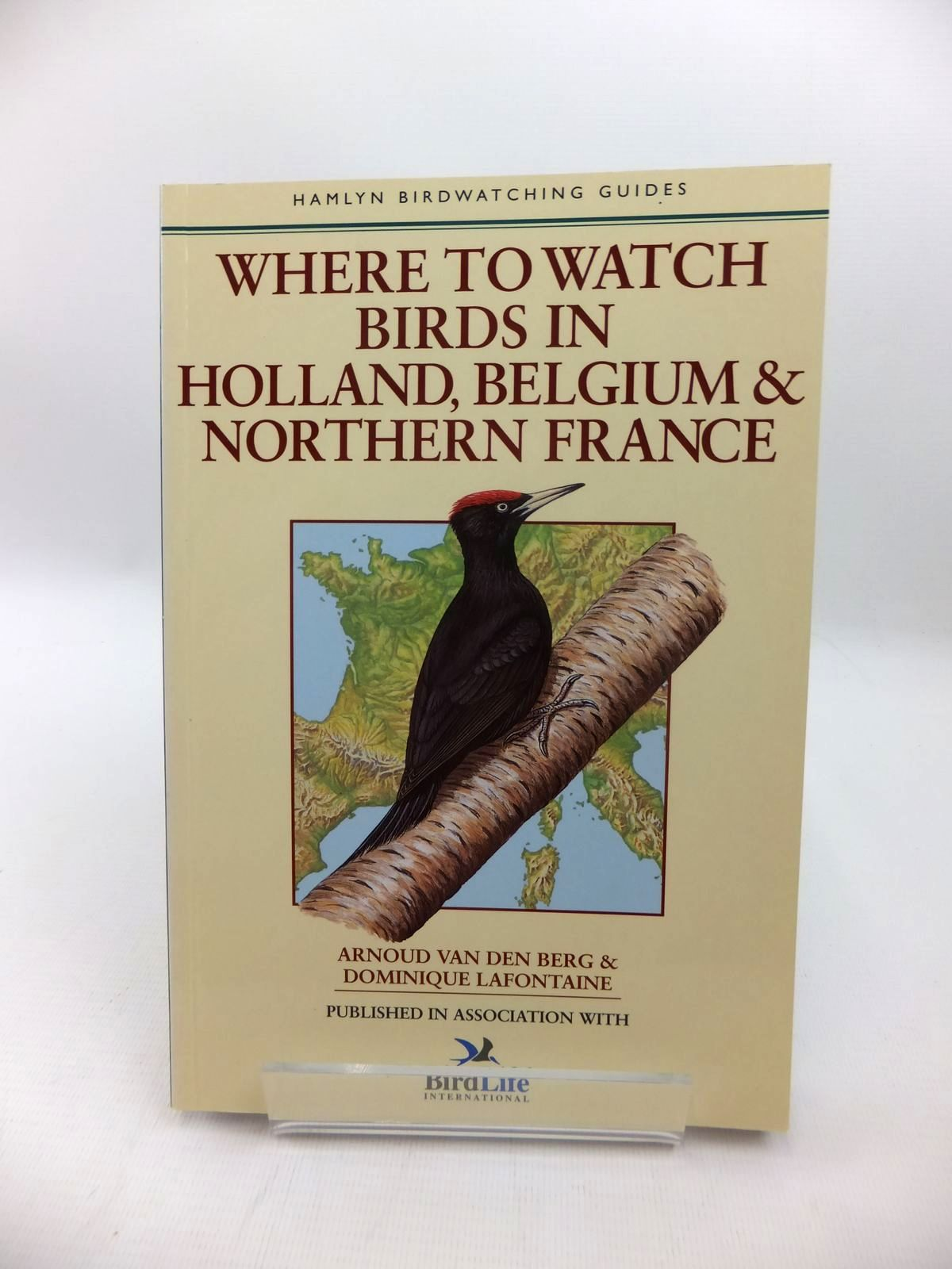 Photo of WHERE TO WATCH BIRDS IN HOLLAND, BELGIUM & NORTHERN FRANCE