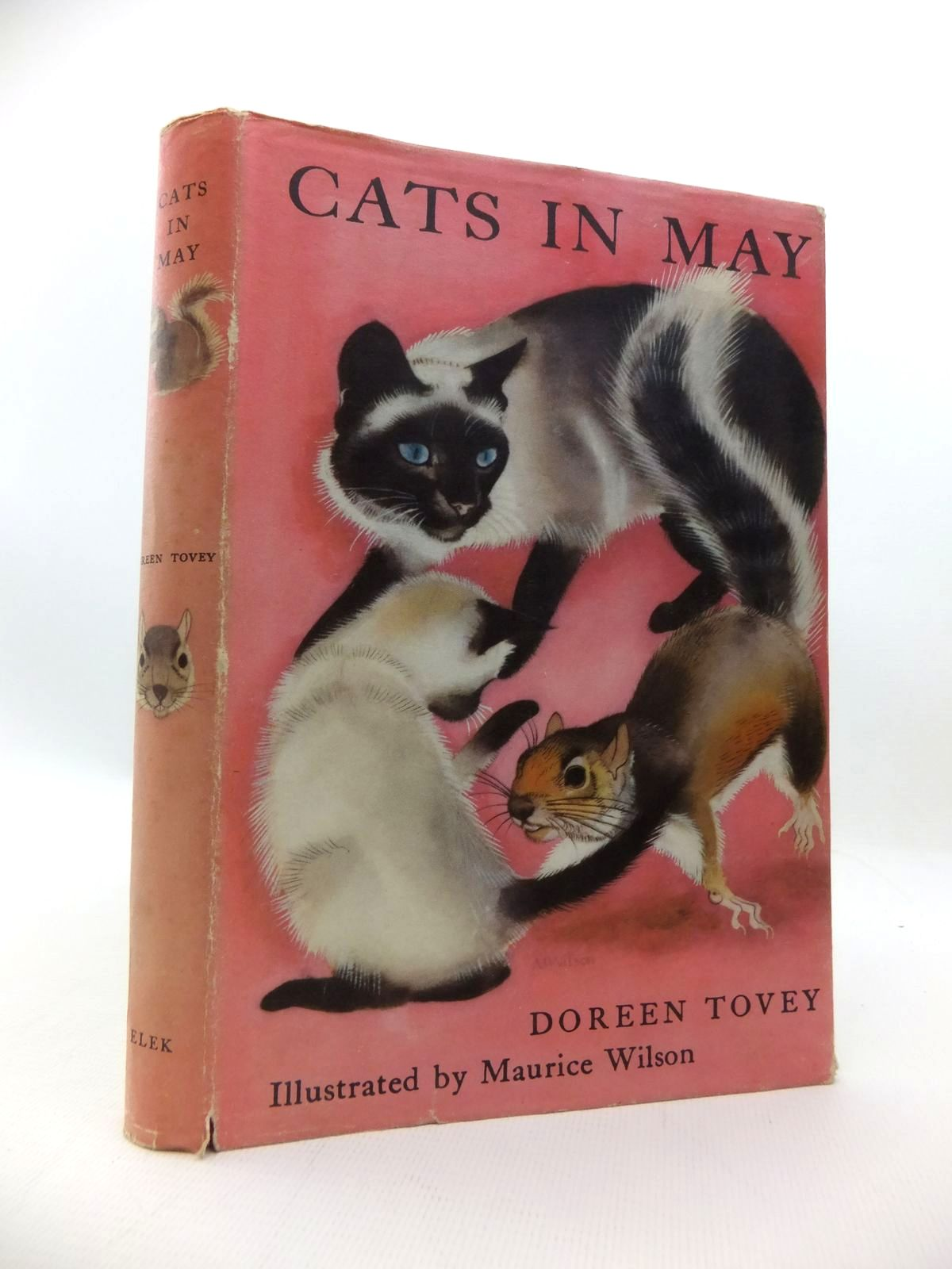 Photo of CATS IN MAY written by Tovey, Doreen illustrated by Wilson, Maurice published by Elek Books (STOCK CODE: 1814691)  for sale by Stella & Rose's Books