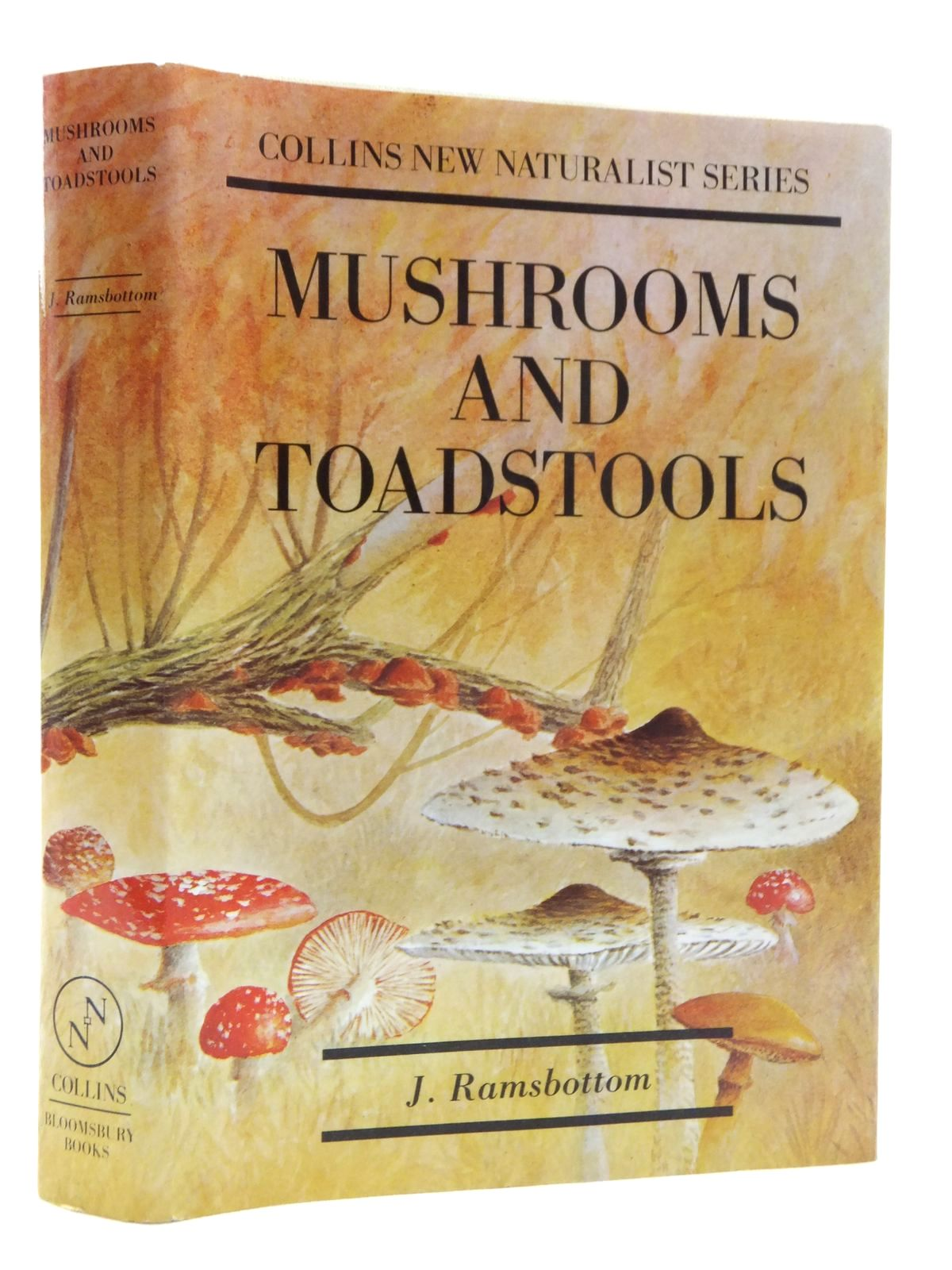 Photo of MUSHROOMS AND TOADSTOOLS (NN 7) written by Ramsbottom, John published by Bloomsbury Books (STOCK CODE: 1814800)  for sale by Stella & Rose's Books