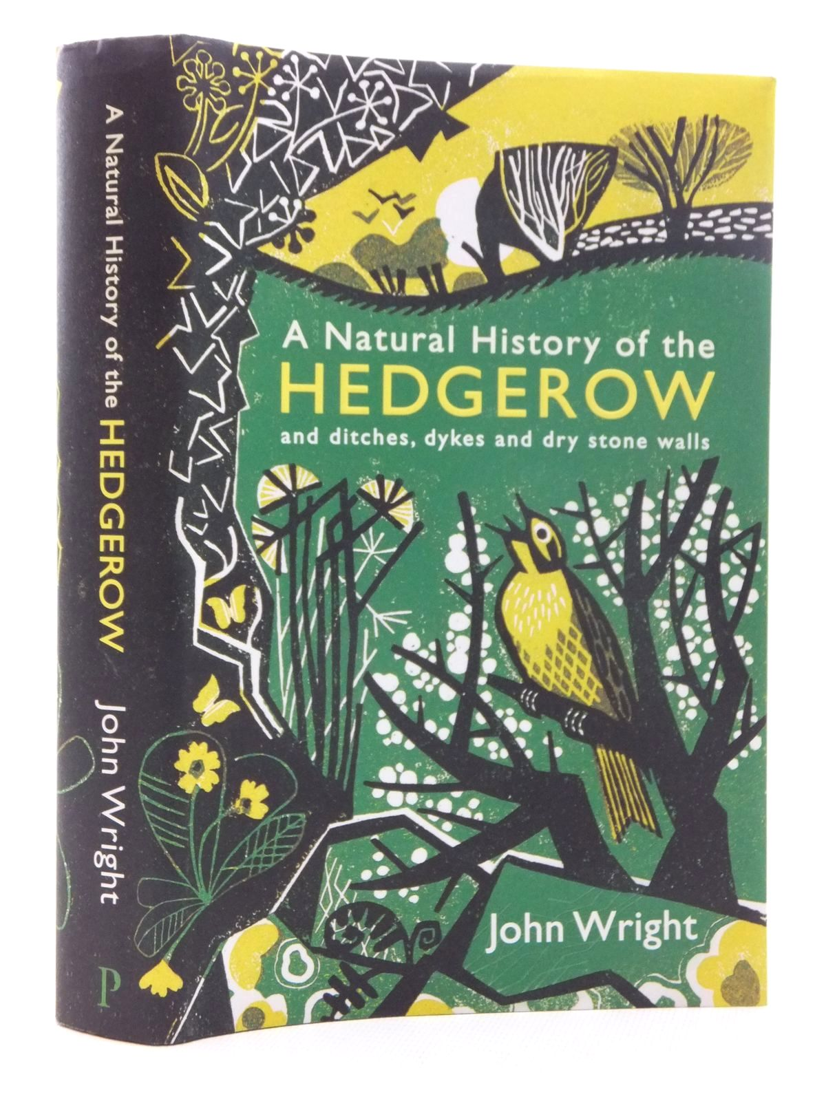 Photo of A NATURAL HISTORY OF THE HEDGEROW AND DITCHES, DYKES AND DRY STONE WALLS written by Wright, John published by Profile Books (STOCK CODE: 1814958)  for sale by Stella & Rose's Books