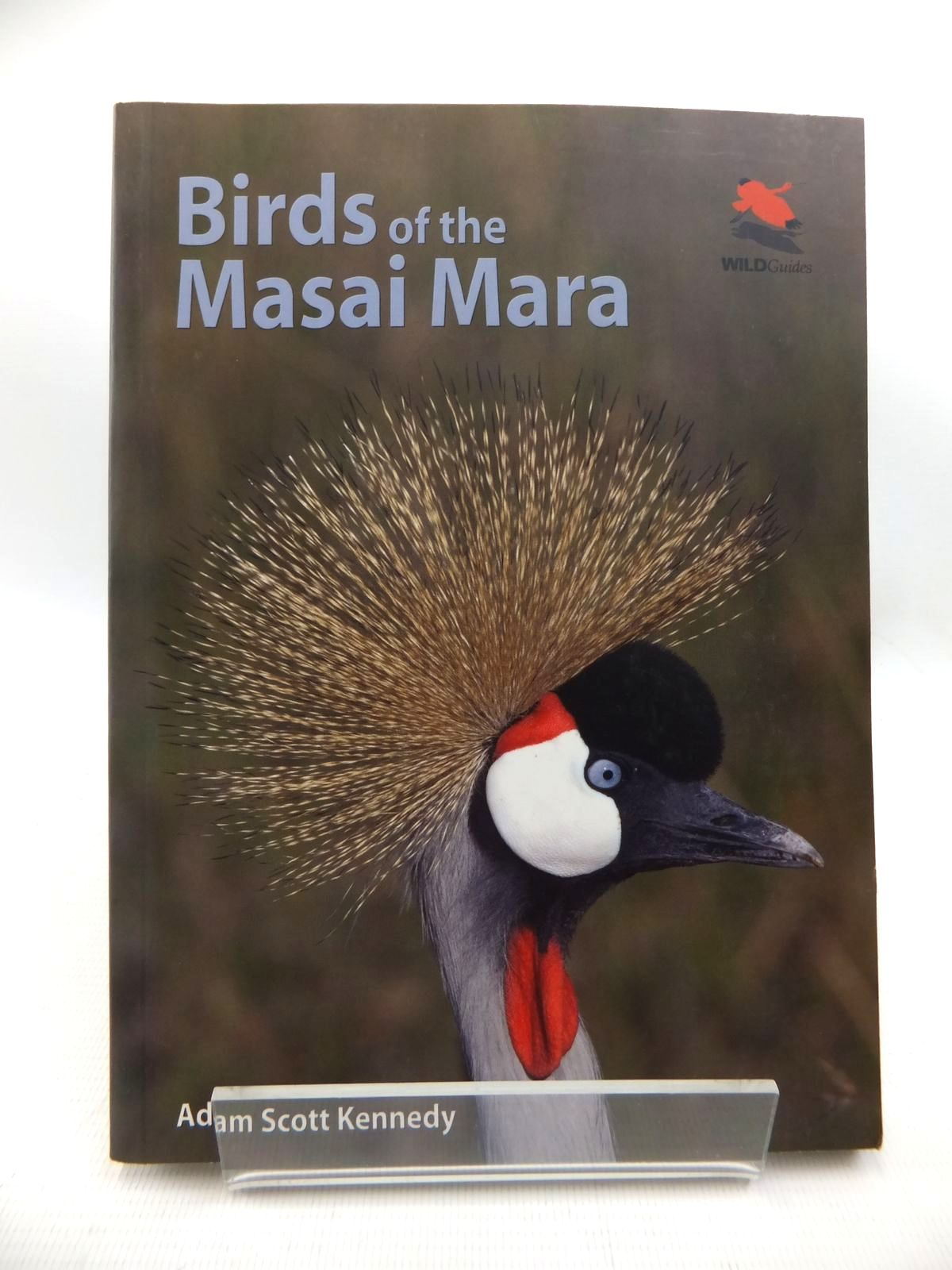 Photo of BIRDS OF THE MASAI MARA written by Kennedy, Adam Scott published by Princeton (STOCK CODE: 1815187)  for sale by Stella & Rose's Books