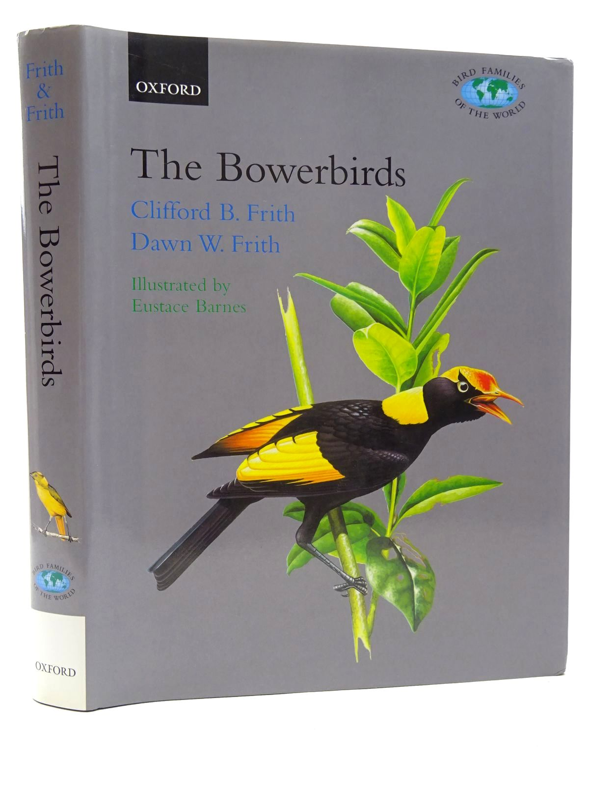 Photo of THE BOWERBIRDS: PTILONORHYNCHIDAE (BIRD FAMILIES OF THE WORLD SERIES) written by Frith, Clifford B.<br />Frith, Dawn W. illustrated by Barnes, Eustace published by Oxford University Press (STOCK CODE: 1815978)  for sale by Stella & Rose's Books