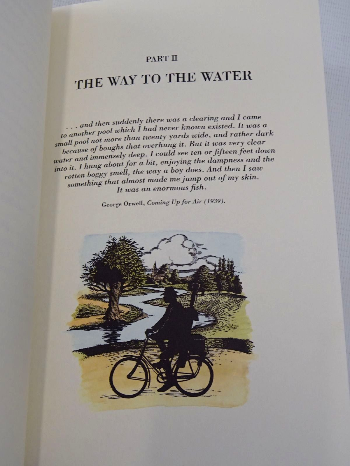 Photo of CASTING AT THE SUN written by Yates, Christopher illustrated by Hatcher, Clare published by The Medlar Press (STOCK CODE: 1817243)  for sale by Stella & Rose's Books