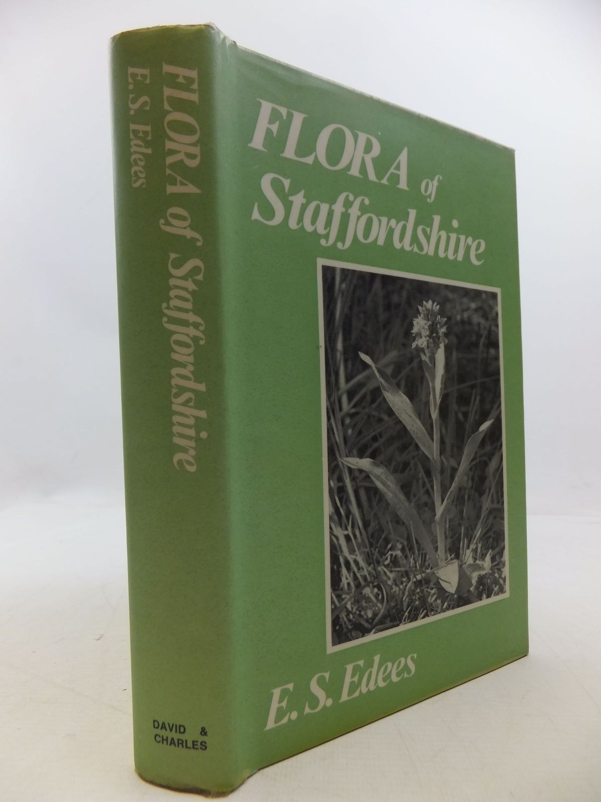 Photo of FLORA OF STAFFORDSHIRE written by Edees, E.S. published by David & Charles (STOCK CODE: 2112308)  for sale by Stella & Rose's Books