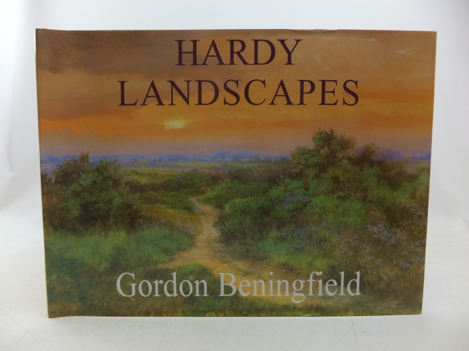 Photo of HARDY LANDSCAPES written by Beningfield, Gordon<br />Hardy, Thomas illustrated by Beningfield, Gordon published by Selectabook Ltd. (STOCK CODE: 2113161)  for sale by Stella & Rose's Books