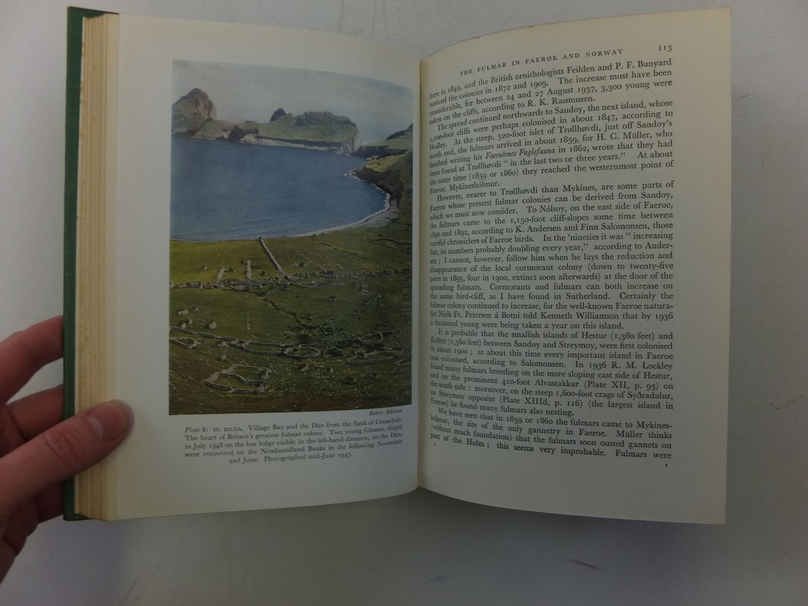 Photo of THE FULMAR (NMN 6) written by Fisher, James illustrated by Scott, Peter published by Collins (STOCK CODE: 2116256)  for sale by Stella & Rose's Books