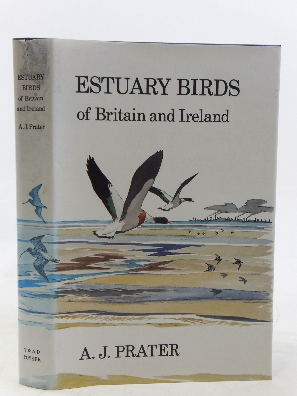 Photo of ESTUARY BIRDS OF BRITAIN AND IRELAND written by Prater, A.J. illustrated by Busby, John published by T. & A.D. Poyser (STOCK CODE: 2116580)  for sale by Stella & Rose's Books