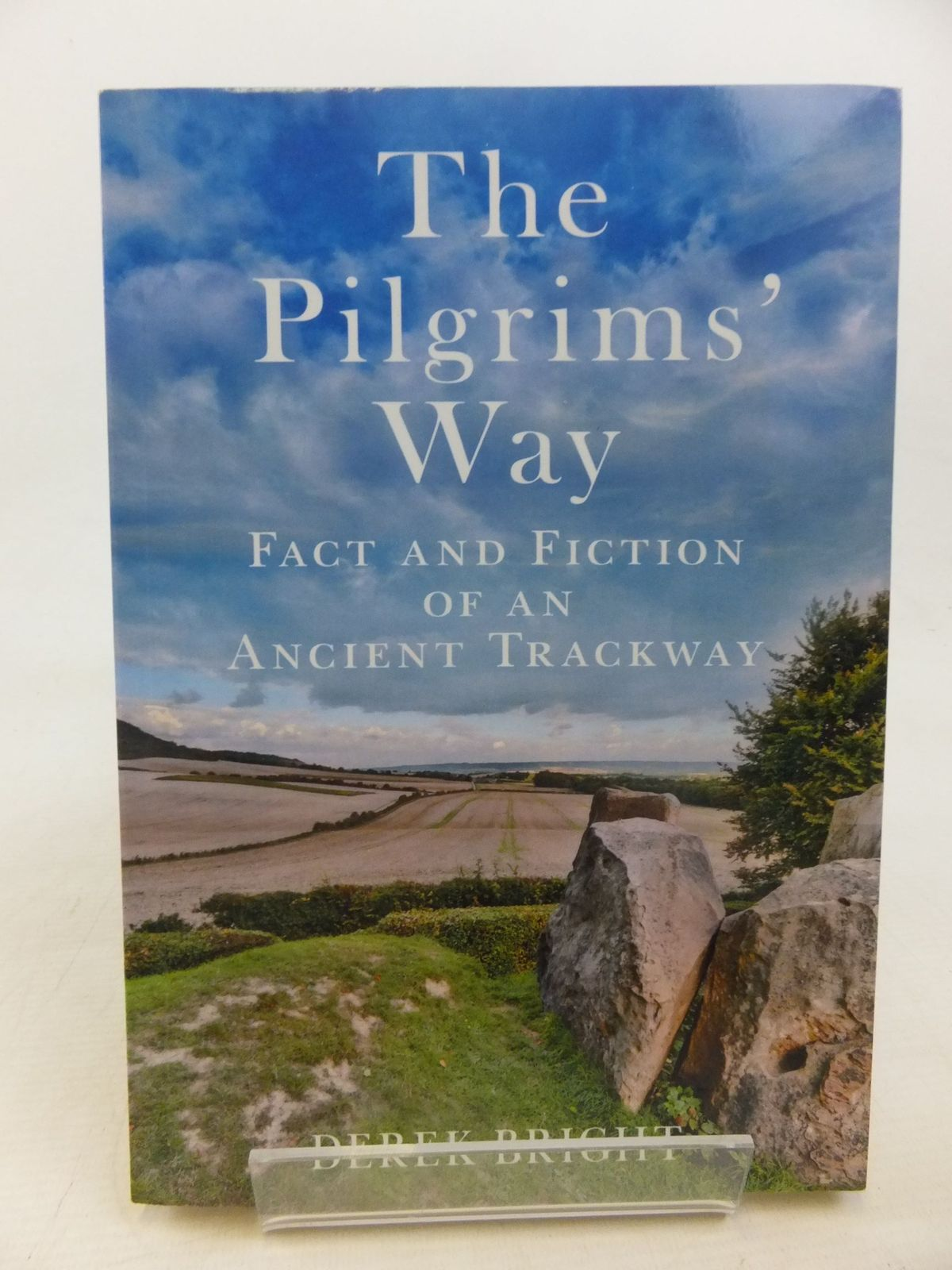 Photo of THE PILGRIM'S WAY written by Bright, Derek published by The History Press (STOCK CODE: 2117632)  for sale by Stella & Rose's Books