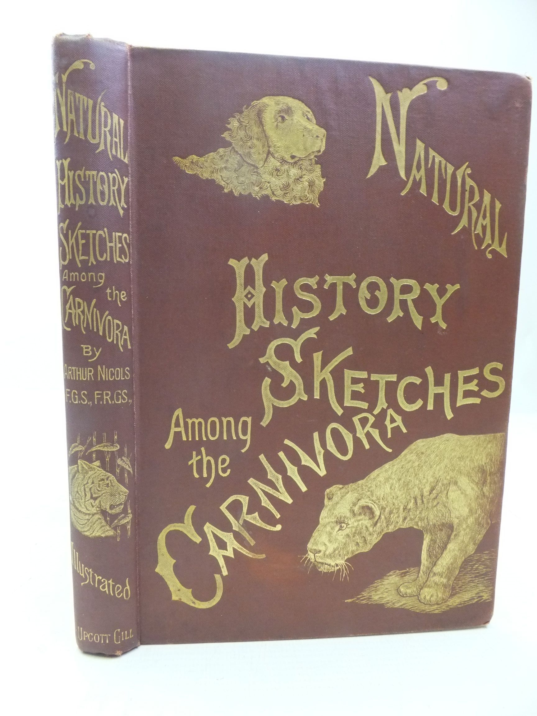 Photo of NATURAL HISTORY SKETCHES AMONG THE CARNIVORA written by Nicols, Arthur illustrated by Nettleship, J.T.<br />Brittan, Charles E.<br />Wood, T.W. published by L. Upcott Gill (STOCK CODE: 2118512)  for sale by Stella & Rose's Books