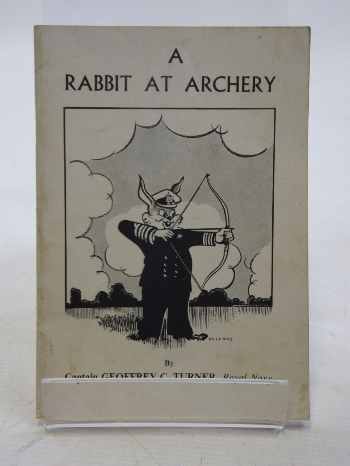 Photo of A RABBIT AT ARCHERY