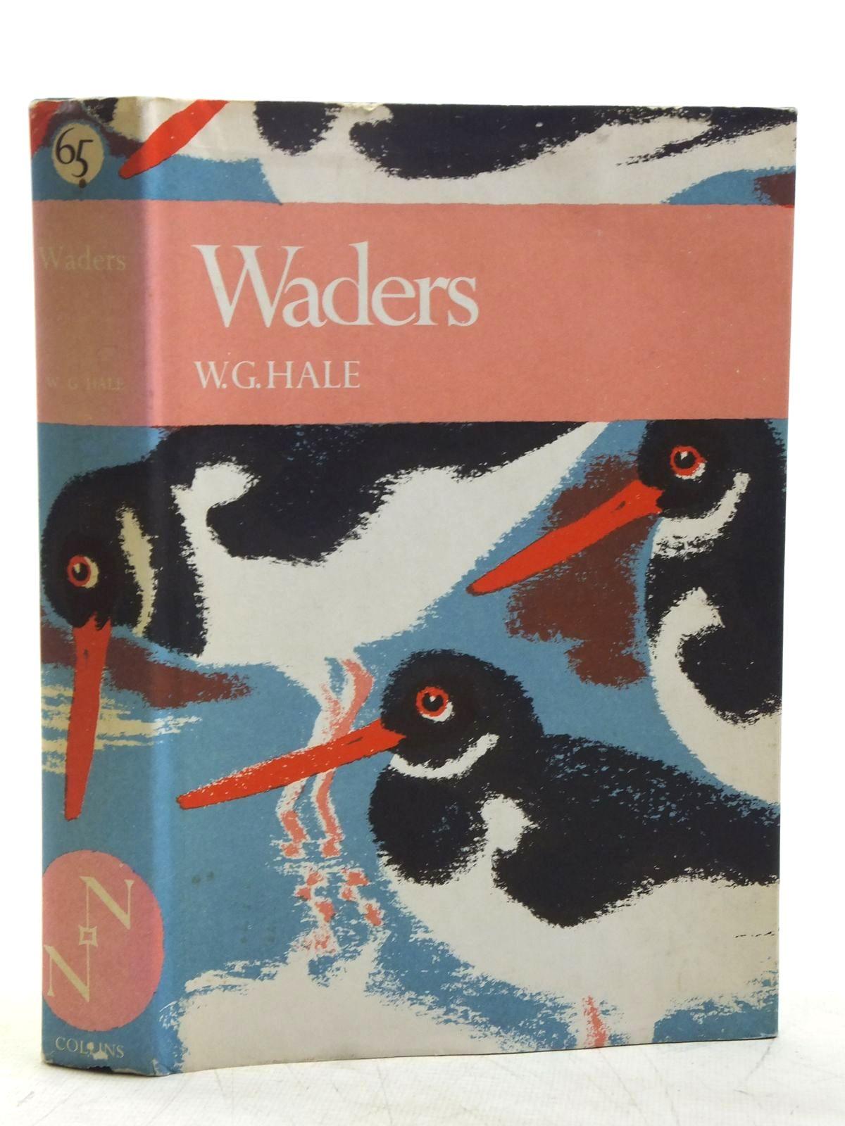 Photo of WADERS (NN 65)