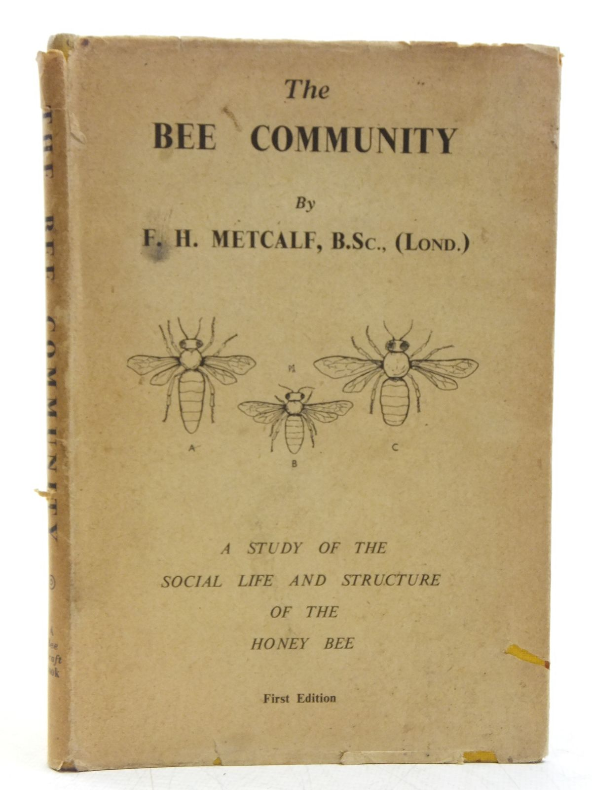 Photo of THE BEE COMMUNITY written by Metcalf, F.H. published by Bee Craft (STOCK CODE: 2119540)  for sale by Stella & Rose's Books