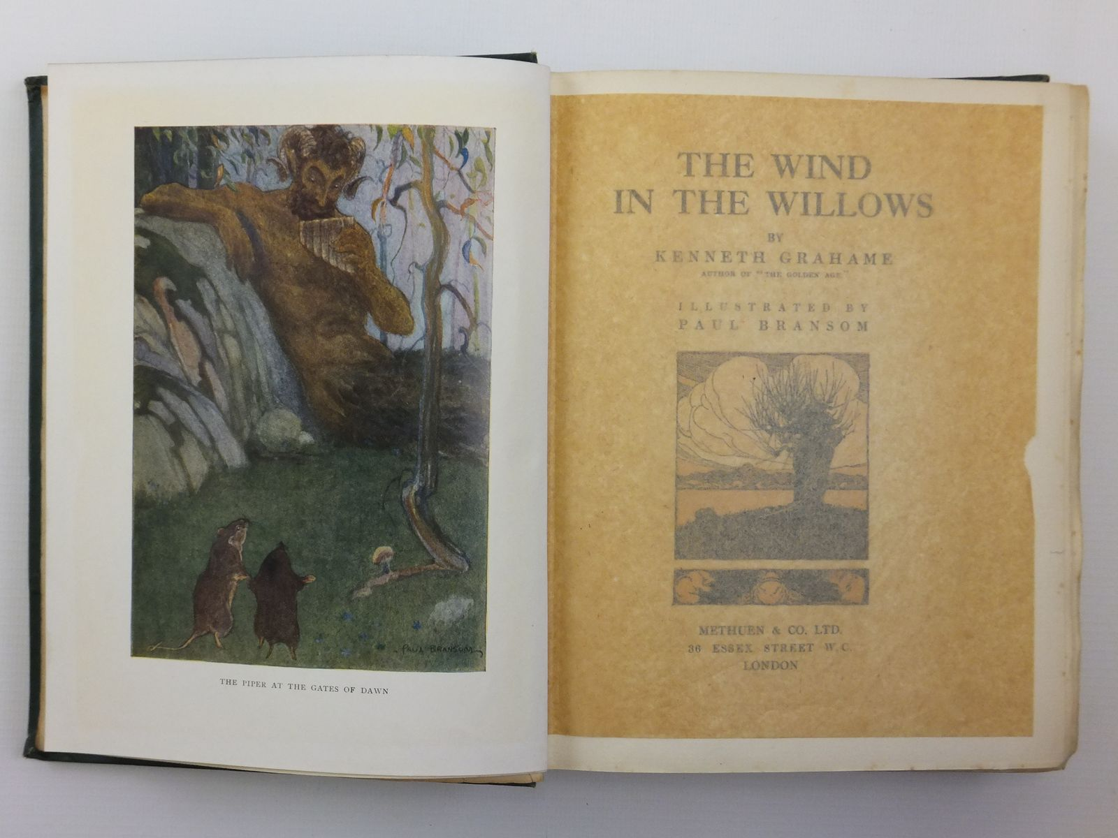 Photo of THE WIND IN THE WILLOWS written by Grahame, Kenneth illustrated by Bransom, Paul published by Methuen & Co. Ltd. (STOCK CODE: 2120888)  for sale by Stella & Rose's Books