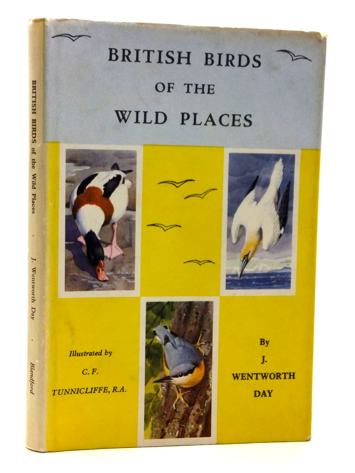 Photo of BRITISH BIRDS OF THE WILD PLACES written by Day, J.<br />Day, J. Wentworth illustrated by Tunnicliffe, C.F. published by Blandford Press (STOCK CODE: 2120904)  for sale by Stella & Rose's Books