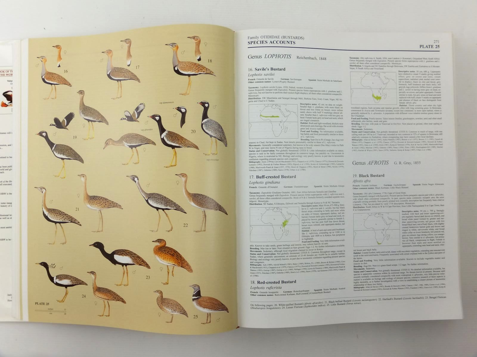Photo of HANDBOOK OF THE BIRDS OF THE WORLD VOLUME 3: HOATZIN TO AUKS written by Del Hoyo, Josep<br />Elliott, Andrew<br />Sargatal, Jordi<br />et al, illustrated by Arlott, Norman<br />Burn, Hilary<br />Bateman, Robert<br />et al., published by Lynx Edicions (STOCK CODE: 2123515)  for sale by Stella & Rose's Books