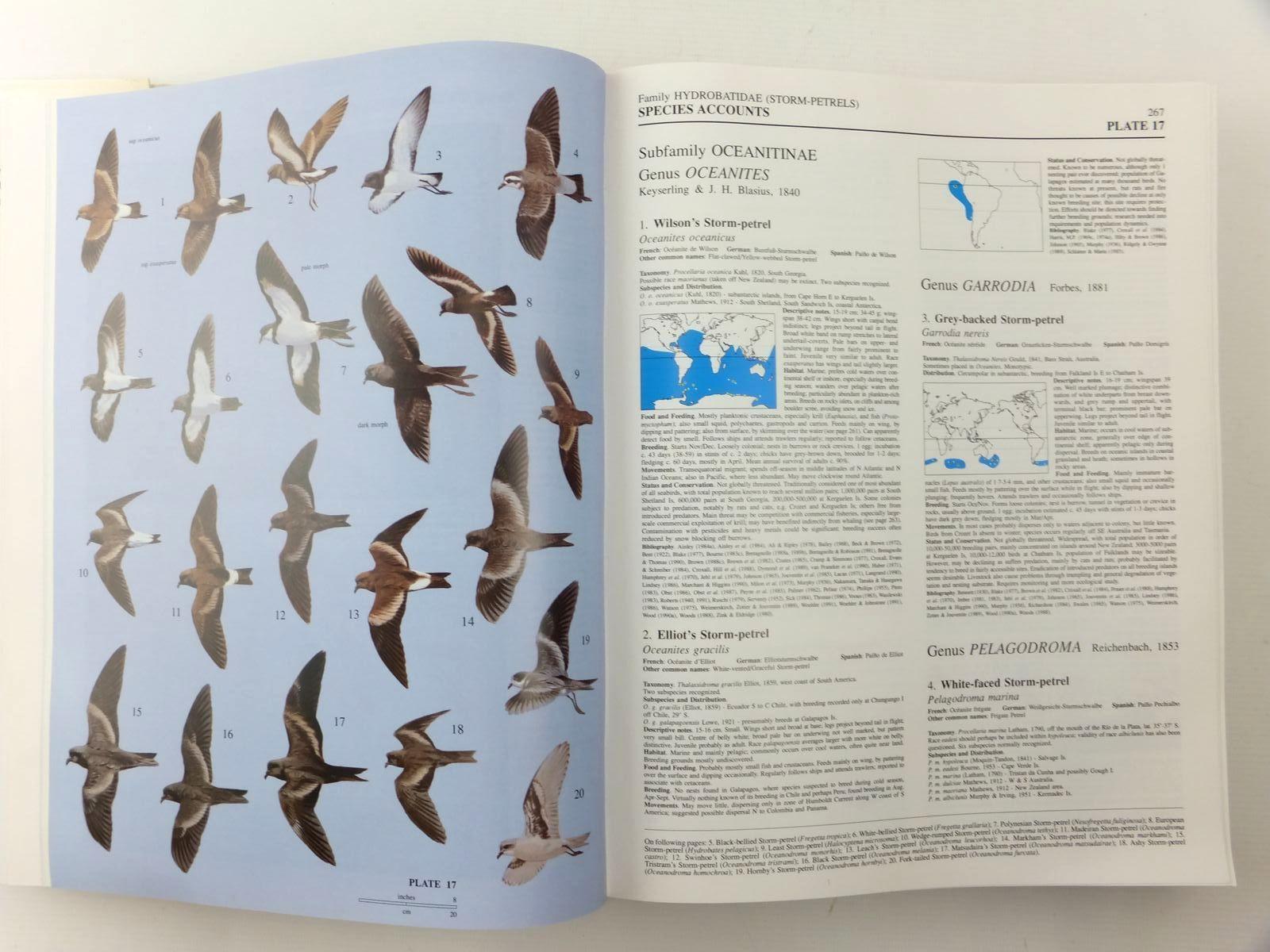Photo of HANDBOOK OF THE BIRDS OF THE WORLD VOLUME I: OSTRICH TO DUCKS written by Del Hoyo, Josep<br />Elliott, Andrew<br />Sargatal, Jordi<br />et al,  illustrated by Jutglar, Francesc<br />Sanz, Lluis<br />et al.,  published by Lynx Edicions (STOCK CODE: 2123529)  for sale by Stella & Rose's Books