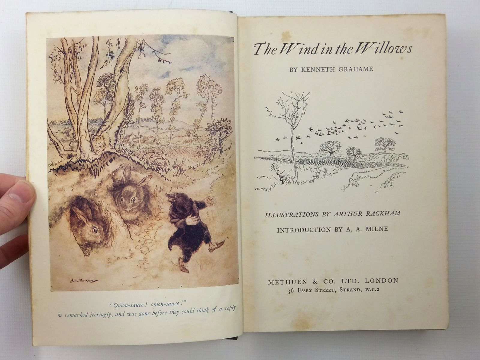 Photo of THE WIND IN THE WILLOWS written by Grahame, Kenneth illustrated by Rackham, Arthur published by Methuen & Co. Ltd. (STOCK CODE: 2123533)  for sale by Stella & Rose's Books
