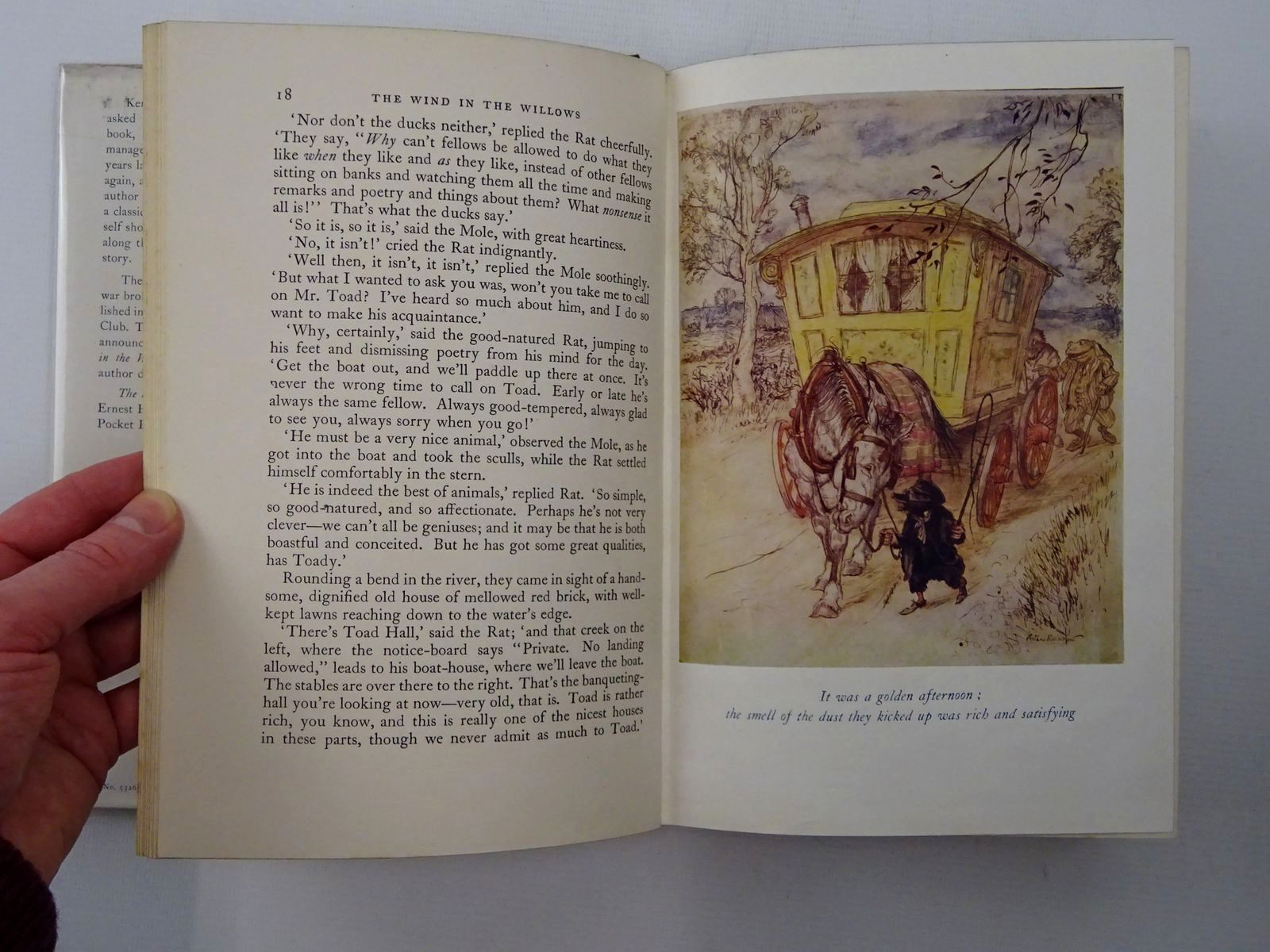 Photo of THE WIND IN THE WILLOWS written by Grahame, Kenneth illustrated by Rackham, Arthur published by Methuen & Co. Ltd. (STOCK CODE: 2124400)  for sale by Stella & Rose's Books