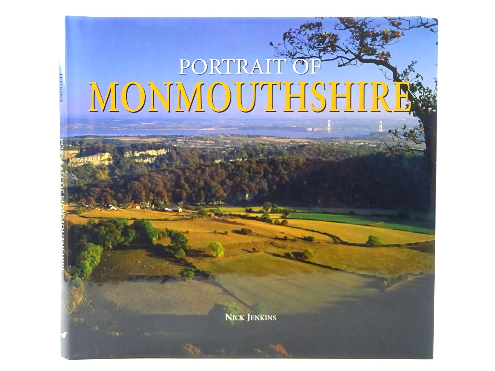 Photo of PORTRAIT OF MONMOUTSHIRE written by Jenkins, Nick published by Halsgrove (STOCK CODE: 2124668)  for sale by Stella & Rose's Books