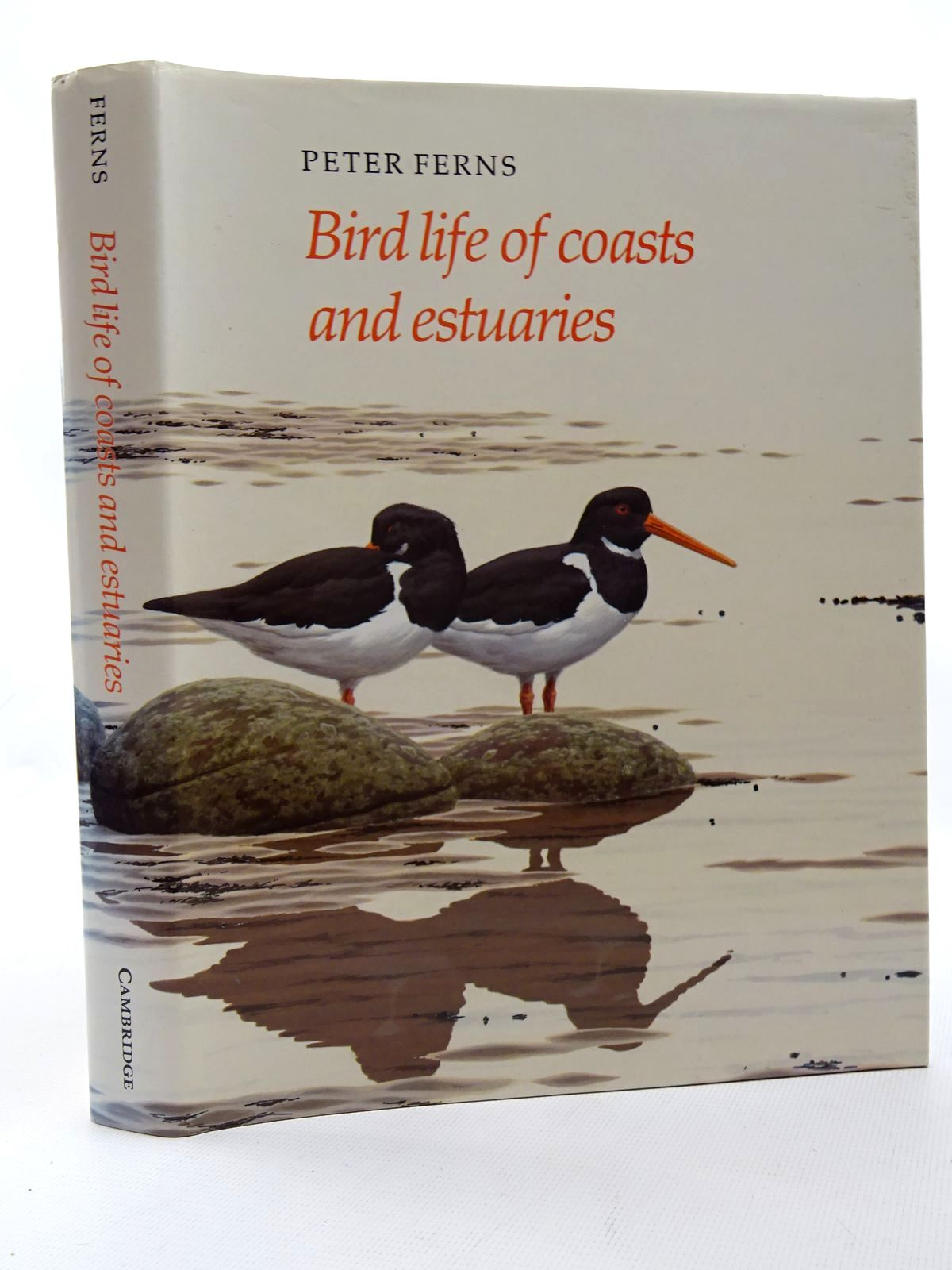 Photo of BIRD LIFE OF COASTS AND ESTUARIES written by Ferns, P.N. illustrated by Rose, Chris published by Cambridge University Press (STOCK CODE: 2124708)  for sale by Stella & Rose's Books