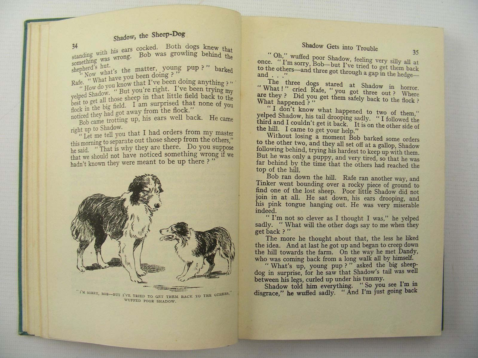 Photo of SHADOW THE SHEEP-DOG written by Blyton, Enid illustrated by Gee, Lucy published by George Newnes Ltd. (STOCK CODE: 2124862)  for sale by Stella & Rose's Books