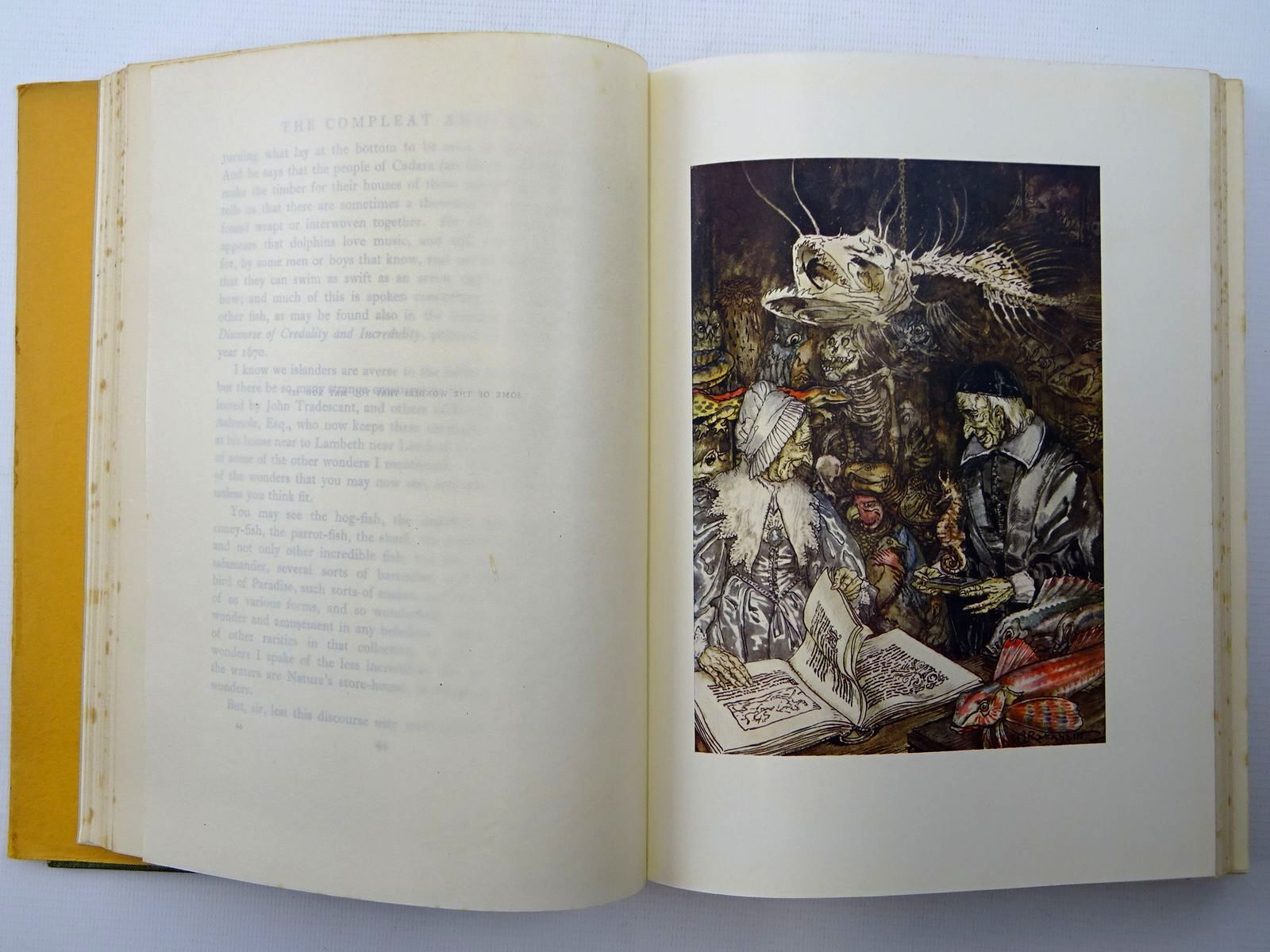 Photo of THE COMPLEAT ANGLER written by Walton, Izaak illustrated by Rackham, Arthur published by George G. Harrap & Co. Ltd. (STOCK CODE: 2124953)  for sale by Stella & Rose's Books