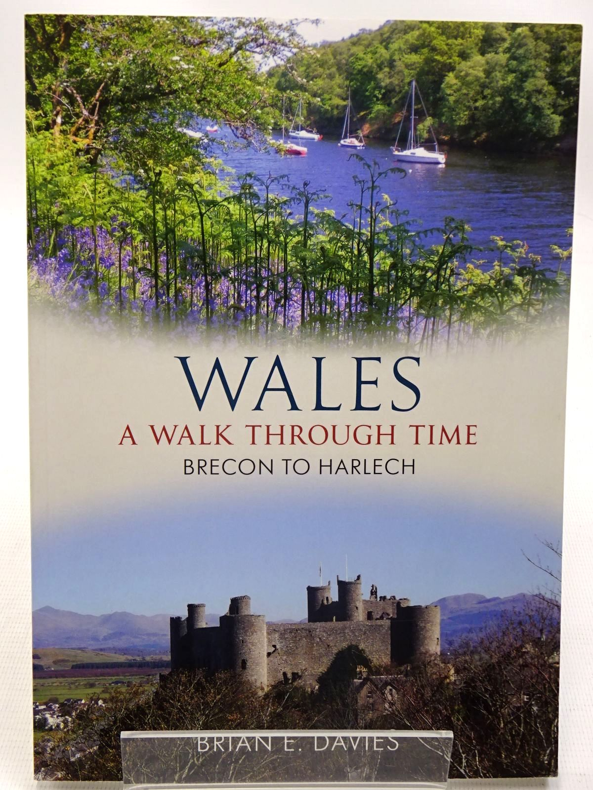 Photo of WALES A WALK THROUGH TIME written by Davies, Brian E. published by Amberley Publishing (STOCK CODE: 2126505)  for sale by Stella & Rose's Books
