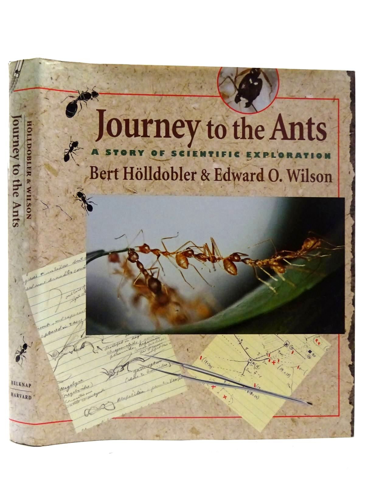 Photo of JOURNEY TO THE ANTS written by Holldobler, Bert<br />Wilson, Edward O. published by Belknap Press (STOCK CODE: 2126611)  for sale by Stella & Rose's Books