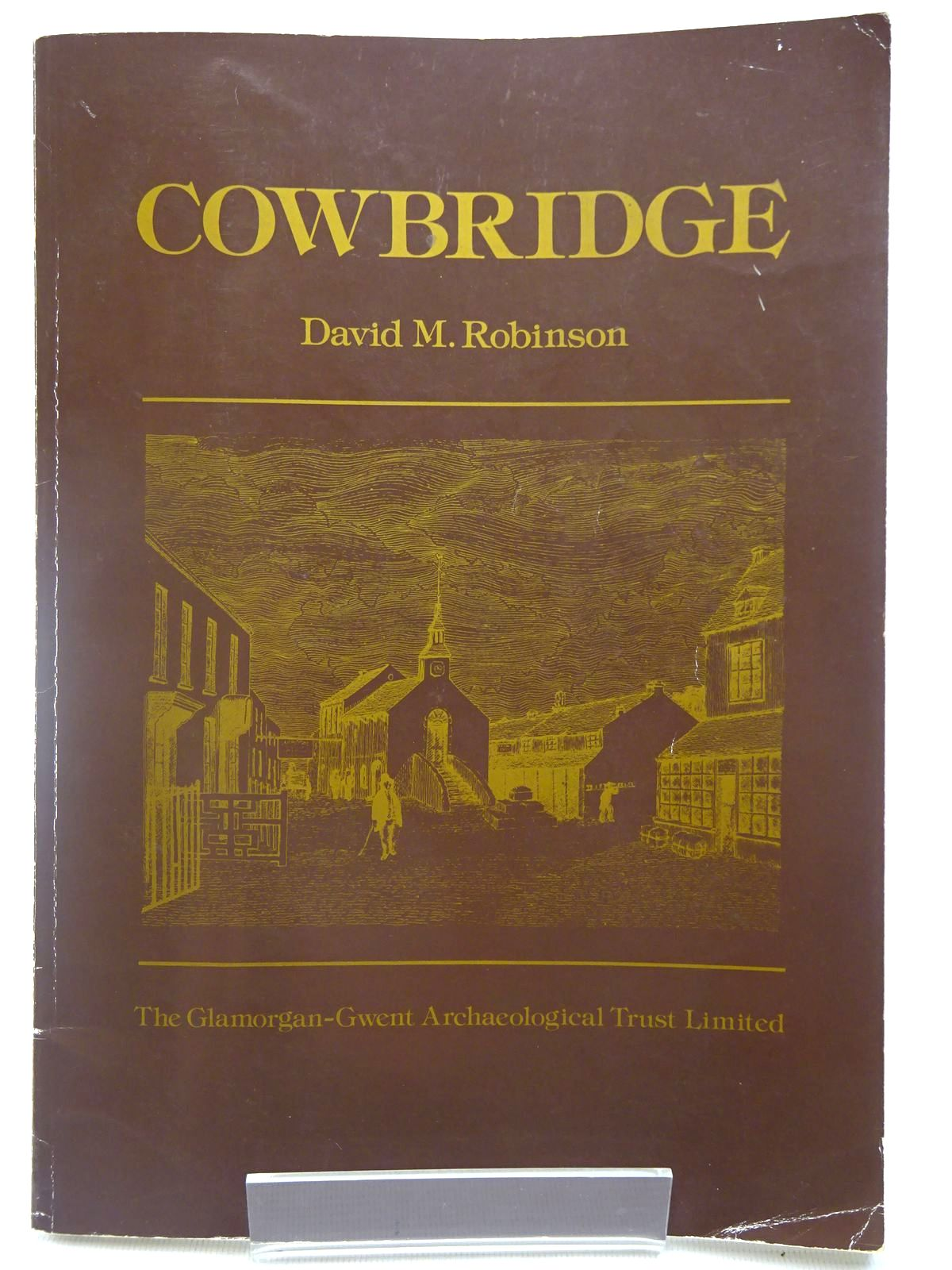 Photo of COWBRIDGE written by Robinson, David M. published by The Glamorgan-Gwent Archaeaological Trust (STOCK CODE: 2127006)  for sale by Stella & Rose's Books
